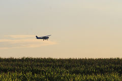 Plane flying over corn field Royalty Free Stock Photo