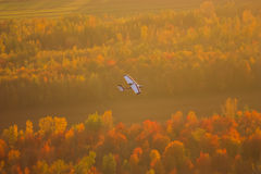 Plane flying over a forest. In fall Royalty Free Stock Photos