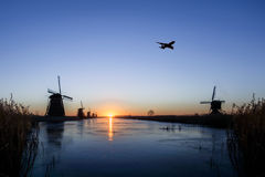 Plane flying over Kinderdijk stock photos