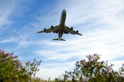 Sun fly. The plane landing at the airport stock images