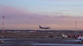 Plane is landing. Large number of aircraft parked. Evening. Purple orange clouds stock footage