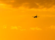The plane is landing at sunset. The plane is landing at the yellow sunset stock image