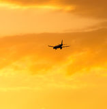 The plane is landing at sunset. The plane is landing at the yellow sunset royalty free stock photos