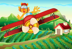 A plane with a lion flying above the farm Royalty Free Stock Photography