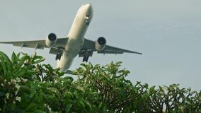 The plane low flies. In the Changi stock footage
