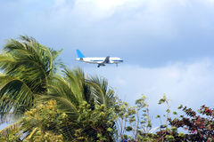 Plane over palm trees. Plane flying over palm trees, tropical landscape, Southern China royalty free stock image