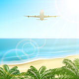 Plane over palms Royalty Free Stock Images