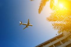 Plane passing palm trees tops and hotel building with blue sky on background. Plane passing palm trees tops and hotel building with blue sky on the background royalty free stock photo