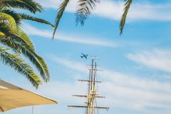 Plane in sky palms leaves in front royalty free stock photo