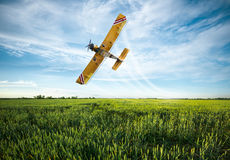 Plane sprayed crops in the field Stock Image