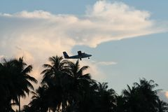 Plane at takeoff over palm trees. Island hopper plane at takeoff over palm trees Stock Photos