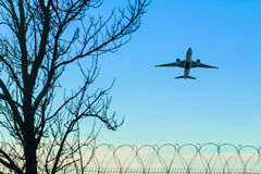 Plane taking off over the barbed wire and tree Royalty Free Stock Photo