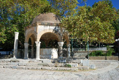 Plane tree of Hippocrates, Kos Stock Photography