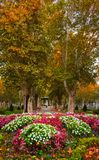 Plane trees avenue and the music pavilion in Zrinjevac park in Zagreb, Croatia, in autumn. View of the plane trees avenue and the music pavilion, water fountains royalty free stock image