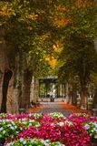 Plane trees avenue and the music pavilion in Zrinjevac park in Zagreb, Croatia, in autumn royalty free stock photo