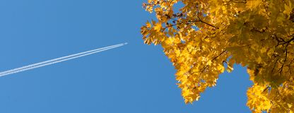 Plane and the white trail in the blue sunny sky over the autumn trees royalty free stock images