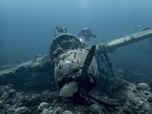 Jake Seaplane Wreck Underwater WW2 Relic with Diver royalty free stock image