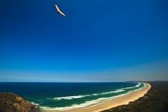 Planeador de caída que se eleva sobre la bahía de Byron de la playa Foto de archivo libre de regalías