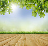 Planed floor and grass Stock Photography