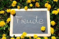 Planen Sie mit den Buchstaben Freude, das im Gras liegt Stockfotos