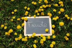 Planen Sie mit den Buchstaben Freude, das im Gras liegt Stockfotografie