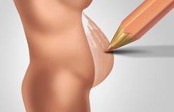 Planera en havandeskap stock illustrationer
