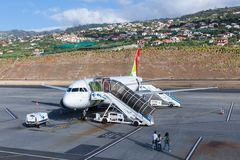 Planes waiting for passengers at the airport of Funchal at Madeira, Portugal Stock Photography