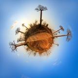Planet Baobab Stock Photo