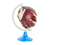 Planet cabbage Stock Image