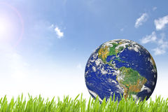 Planet Earth on beautiful green grass Stock Photography