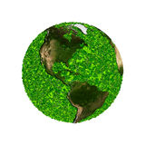 Planet earth covered with the leaves. Eco globe. Ecology planet with with leaves around. eco earth. Eco globe, eco planet Royalty Free Stock Photo
