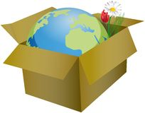 Planet Earth and flowers in the yellow cardboard box Stock Image