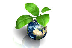 Planet earth with leaf Royalty Free Stock Photos