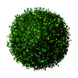 Planet earth made of leaves. Eco globe. Ball of green leaves isolated on white. Royalty Free Stock Photography
