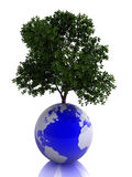 Planet the Earth and tree. The conceptual image of a planet the Earth Stock Photos