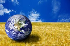 Planet Earth in a yellow field royalty free stock image
