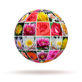 Planet flowers Royalty Free Stock Photos