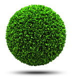Planet of grass. 3D isolated on white planet totally covered in green grass Royalty Free Stock Photo