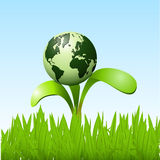 Planet on a sapling Royalty Free Stock Photography