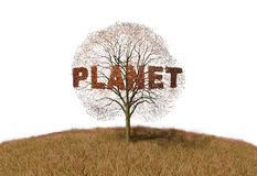 Planet text on a tree Royalty Free Stock Images