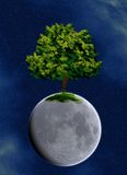 PLANET TREE. Illustration of old tree on detailed moon surface Royalty Free Stock Images