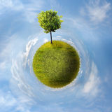 Planet with tree. Green Planet with a tree on blue sky Stock Image