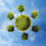 Planet with tree. Green Planet with a tree on blue sky Stock Images