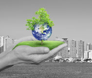 Planet and tree in human hands over black and white city tower a stock photography