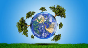 Planet With Tree Royalty Free Stock Photos