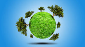 Planet With Tree Royalty Free Stock Images