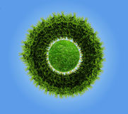 Planet With Tree Royalty Free Stock Image
