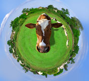 Planeta agricultural Foto de Stock
