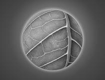 Planeta com textura da folha natural collage imagem de stock royalty free