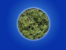 Planeta com textura da grama natural collage imagens de stock